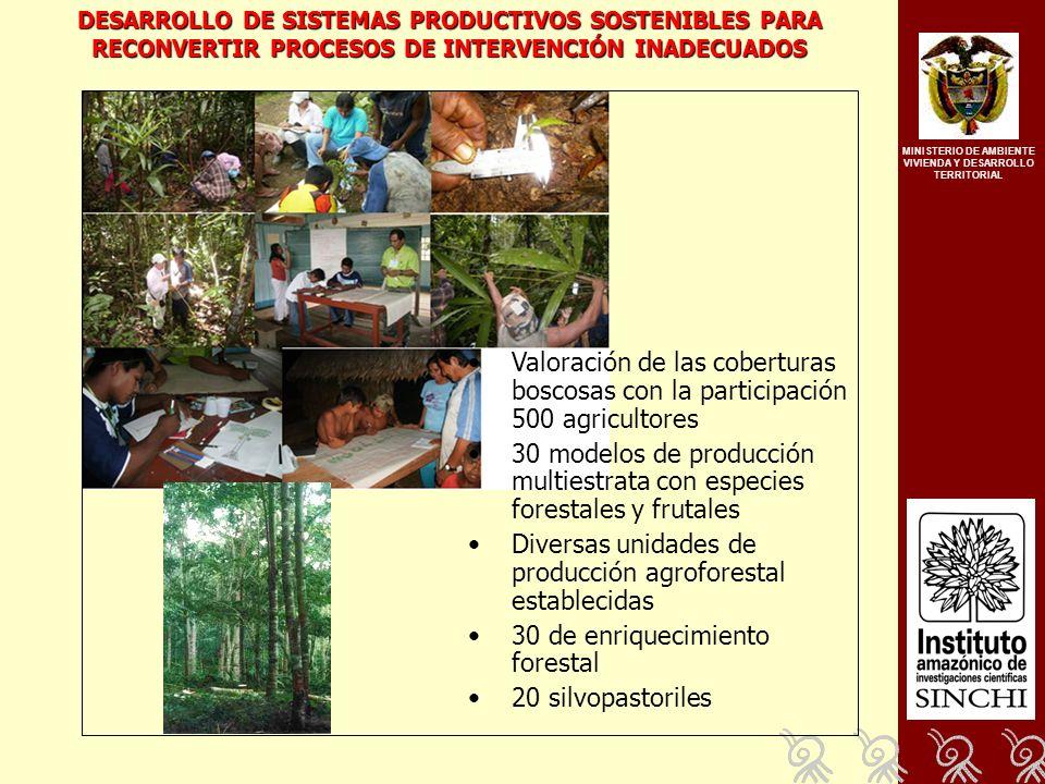MINISTERIO DE AMBIENTE VIVIENDA Y DESARROLLO TERRITORIAL Valoración de las coberturas boscosas con la participación 500 agricultores 30 modelos de producción multiestrata con especies forestales y frutales Diversas unidades de producción agroforestal establecidas 30 de enriquecimiento forestal 20 silvopastoriles DESARROLLO DE SISTEMAS PRODUCTIVOS SOSTENIBLES PARA RECONVERTIR PROCESOS DE INTERVENCIÓN INADECUADOS