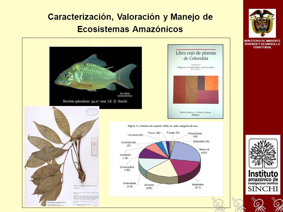 Caracterización, Valoración y Manejo de Ecosistemas Amazónicos MINISTERIO DE AMBIENTE VIVIENDA Y DESARROLLO TERRITORIAL