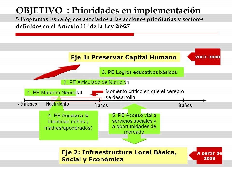 OBJETIVO : Prioridades en implementación 5 Programas Estratégicos asociados a las acciones prioritarias y sectores definidos en el Artículo 11° de la