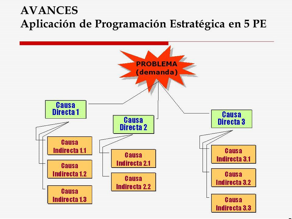 AVANCES Aplicación de Programación Estratégica en 5 PE 52