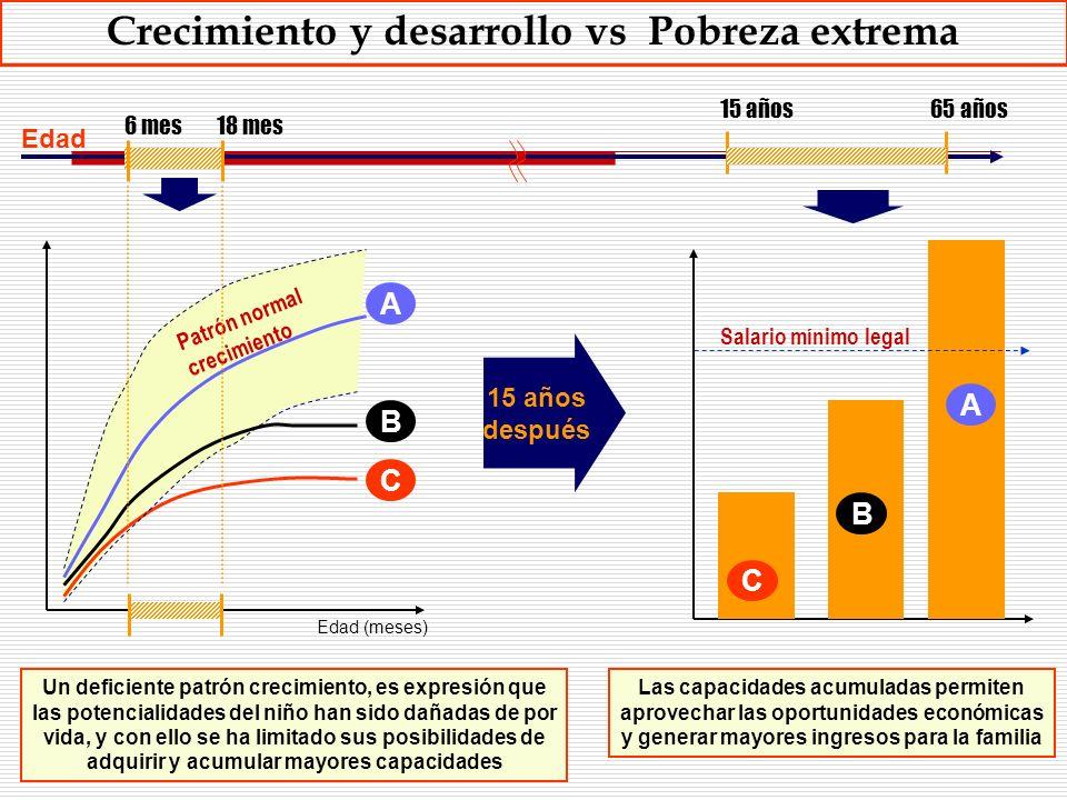 6 mes18 mes 15 años65 años A B C Salario mínimo legal A B C Edad (meses) Patrón normal crecimiento 15 años después Las capacidades acumuladas permiten