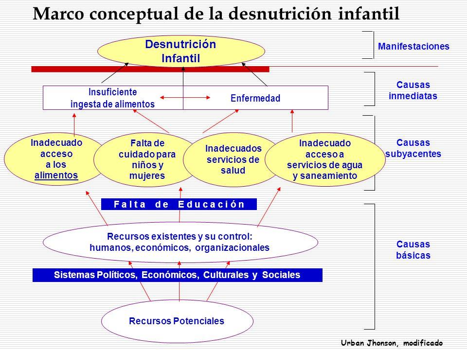 Desnutrición Infantil Insuficiente ingesta de alimentos Enfermedad Inadecuado acceso a los alimentos Falta de cuidado para niños y mujeres Inadecuados