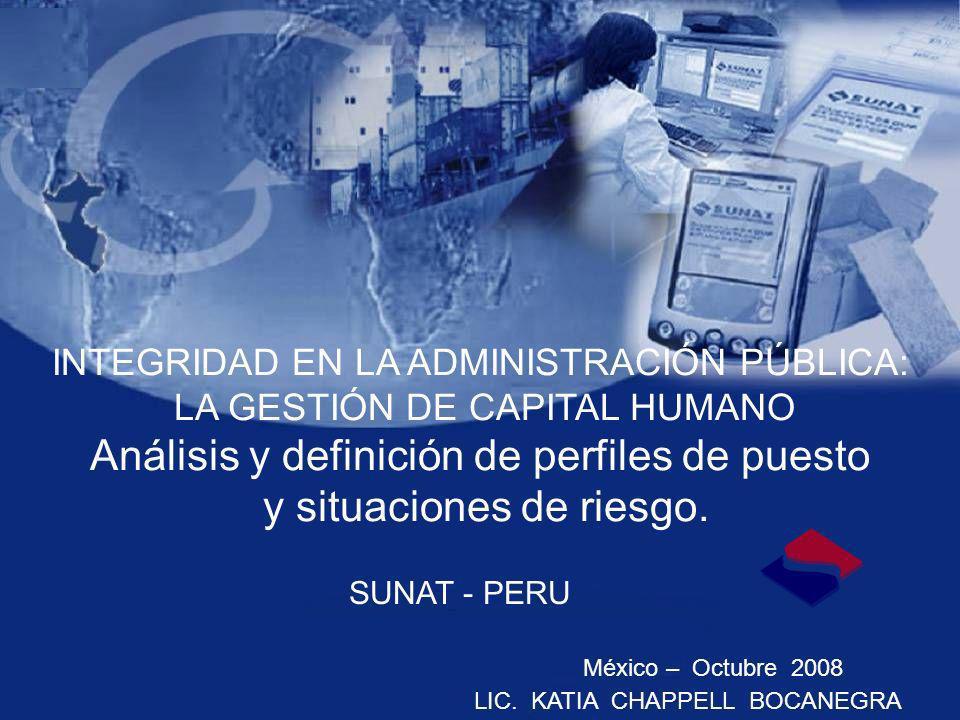 INTEGRIDAD EN LA ADMINISTRACIÓN PÚBLICA: LA GESTIÓN DE CAPITAL HUMANO Análisis y definición de perfiles de puesto y situaciones de riesgo. Julio- 2006