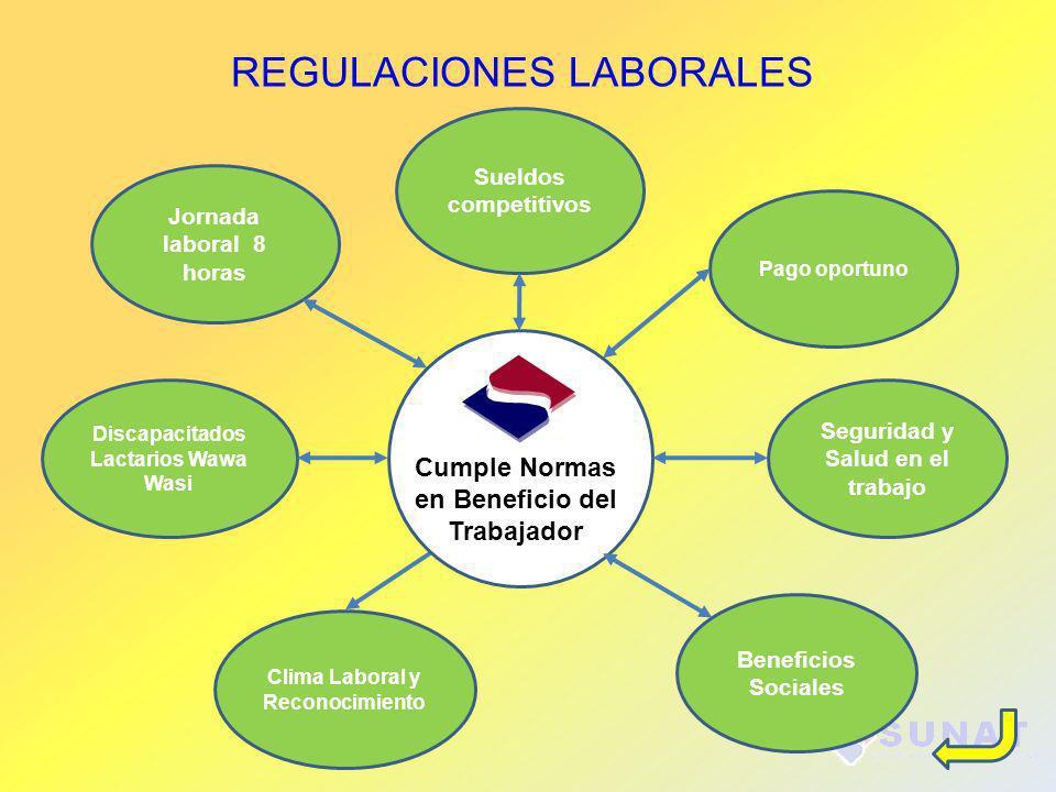 REGULACIONES LABORALES Jornada laboral 8 horas Pago oportuno Sueldos competitivos Seguridad y Salud en el trabajo Clima Laboral y Reconocimiento Benef