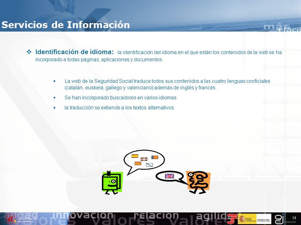 12 Los principales logros obtenidos en materia de accesibilidad actual son: Incorporación de la selección de estilos visuales Servicios de Información