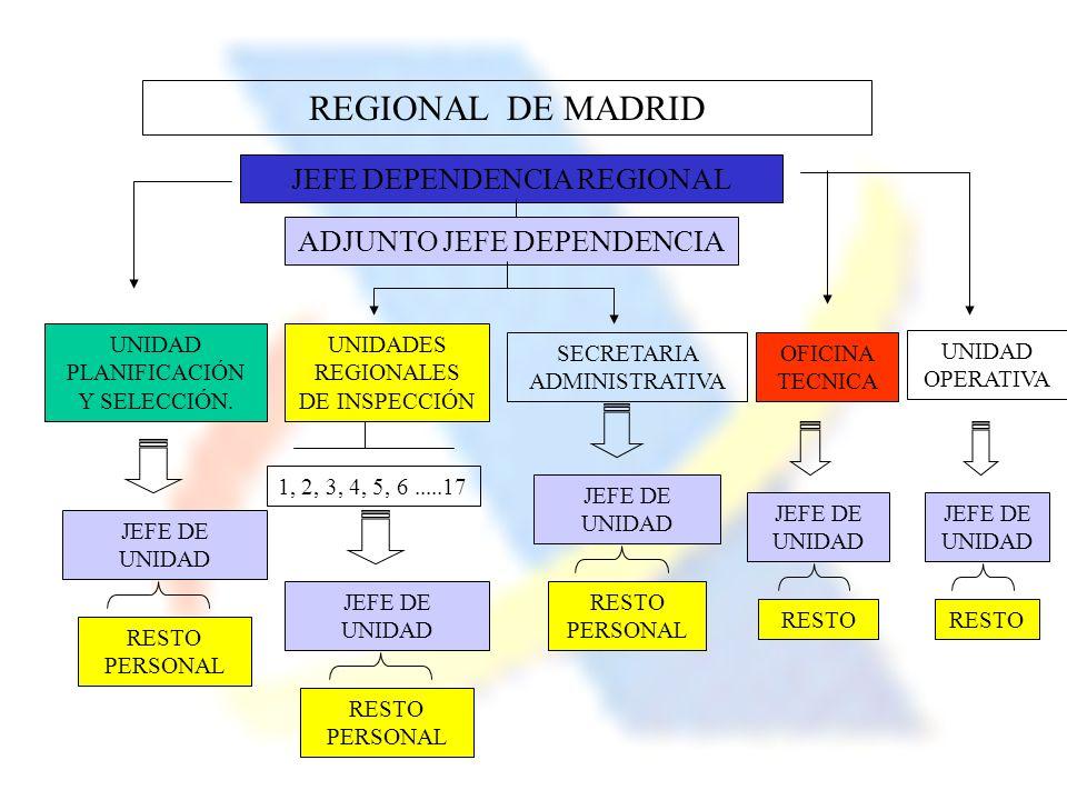 REGIONAL DE MADRID JEFE DEPENDENCIA REGIONAL ADJUNTO JEFE DEPENDENCIA OFICINA TECNICA UNIDAD PLANIFICACIÓN Y SELECCIÓN. UNIDADES REGIONALES DE INSPECC