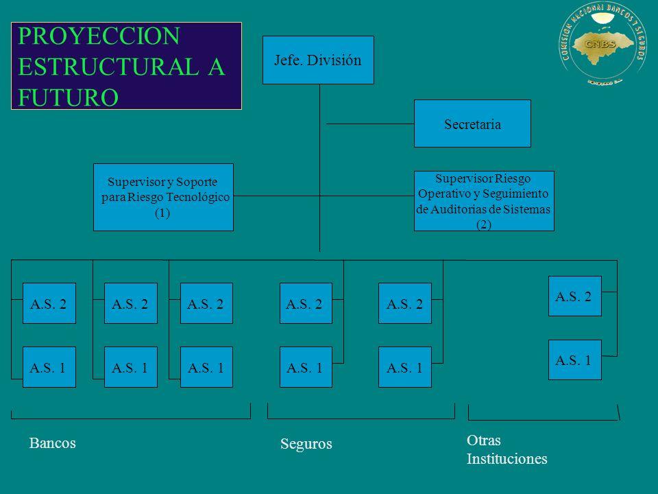 PROYECCION ESTRUCTURAL A FUTURO Otras Instituciones Jefe. División Supervisor y Soporte para Riesgo Tecnológico (1) Supervisor Riesgo Operativo y Segu