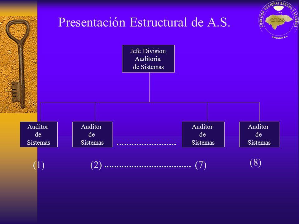 Jefe Division Auditoria de Sistemas Auditor de Sistemas Auditor de Sistemas Auditor de Sistemas Auditor de Sistemas (1)(2)(7) (8)