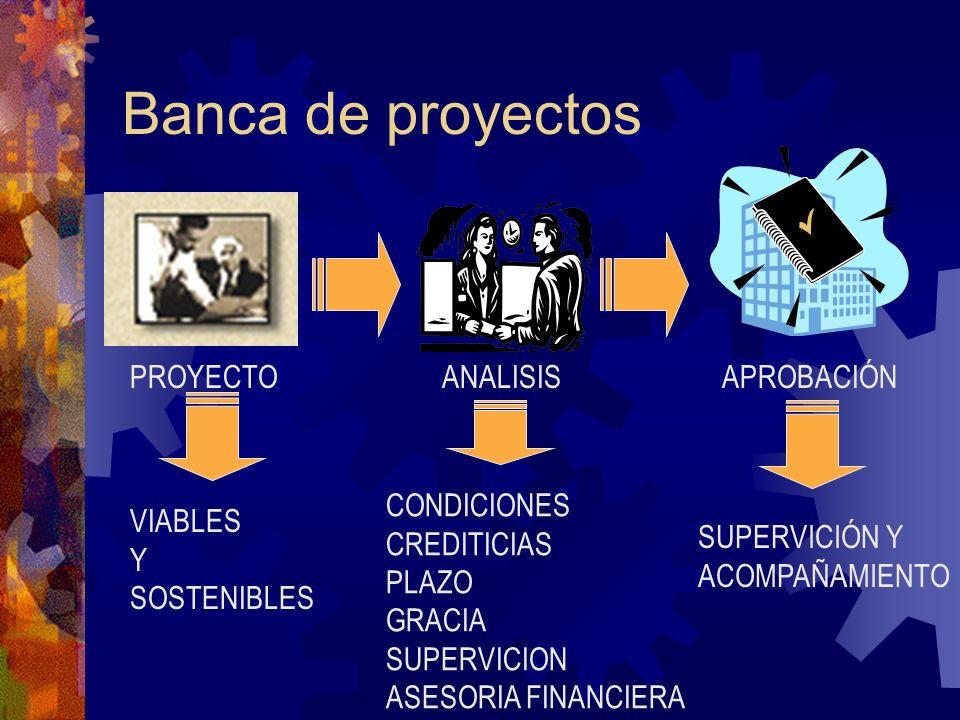 Banca de proyectos PROYECTOANALISISAPROBACIÓN VIABLES Y SOSTENIBLES CONDICIONES CREDITICIAS PLAZO GRACIA SUPERVICION ASESORIA FINANCIERA SUPERVICIÓN Y ACOMPAÑAMIENTO
