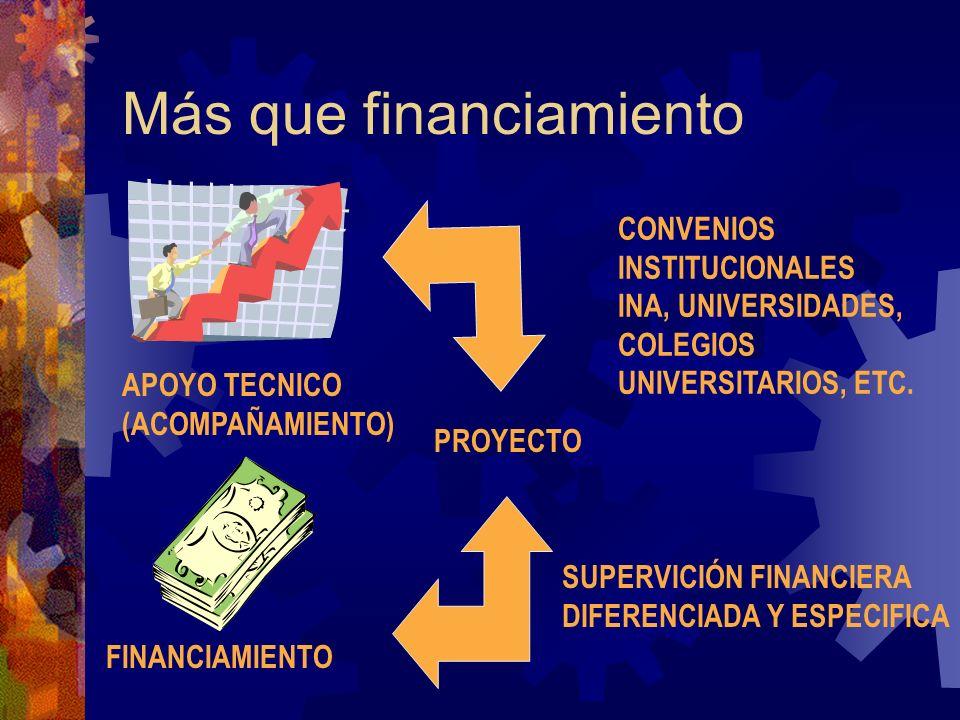 Más que financiamiento APOYO TECNICO (ACOMPAÑAMIENTO) FINANCIAMIENTO PROYECTO CONVENIOS INSTITUCIONALES INA, UNIVERSIDADES, COLEGIOS UNIVERSITARIOS, ETC.
