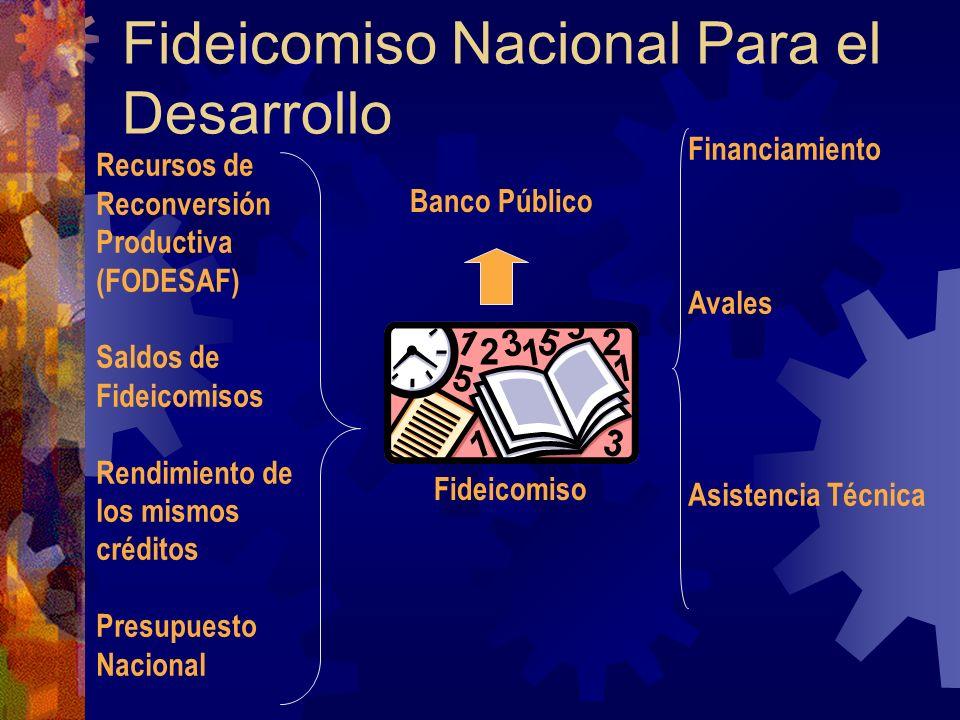 Fideicomiso Nacional Para el Desarrollo Fideicomiso Banco Público Financiamiento Avales Asistencia Técnica Recursos de Reconversión Productiva (FODESAF) Saldos de Fideicomisos Rendimiento de los mismos créditos Presupuesto Nacional