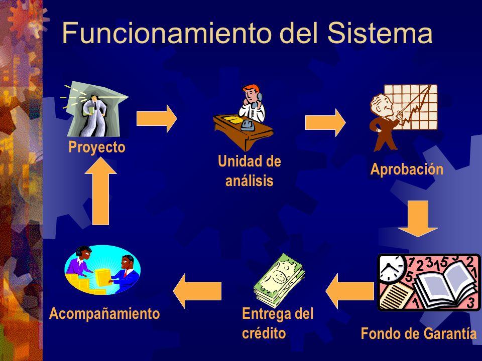 Funcionamiento del Sistema Proyecto Unidad de análisis Aprobación Fondo de Garantía Entrega del crédito Acompañamiento