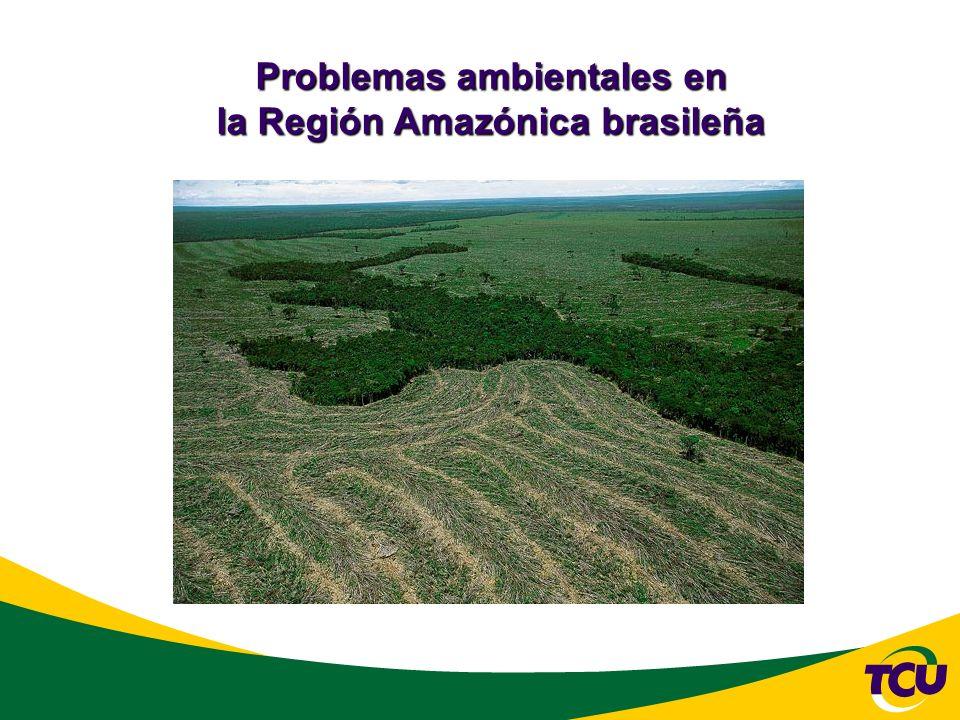 Problemas ambientales en la Región Amazónica brasileña
