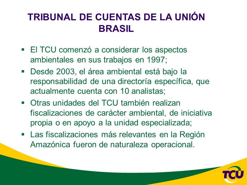 El TCU comenzó a considerar los aspectos ambientales en sus trabajos en 1997; Desde 2003, el área ambiental está bajo la responsabilidad de una directoría específica, que actualmente cuenta con 10 analistas; Otras unidades del TCU también realizan fiscalizaciones de carácter ambiental, de iniciativa propia o en apoyo a la unidad especializada; Las fiscalizaciones más relevantes en la Región Amazónica fueron de naturaleza operacional.