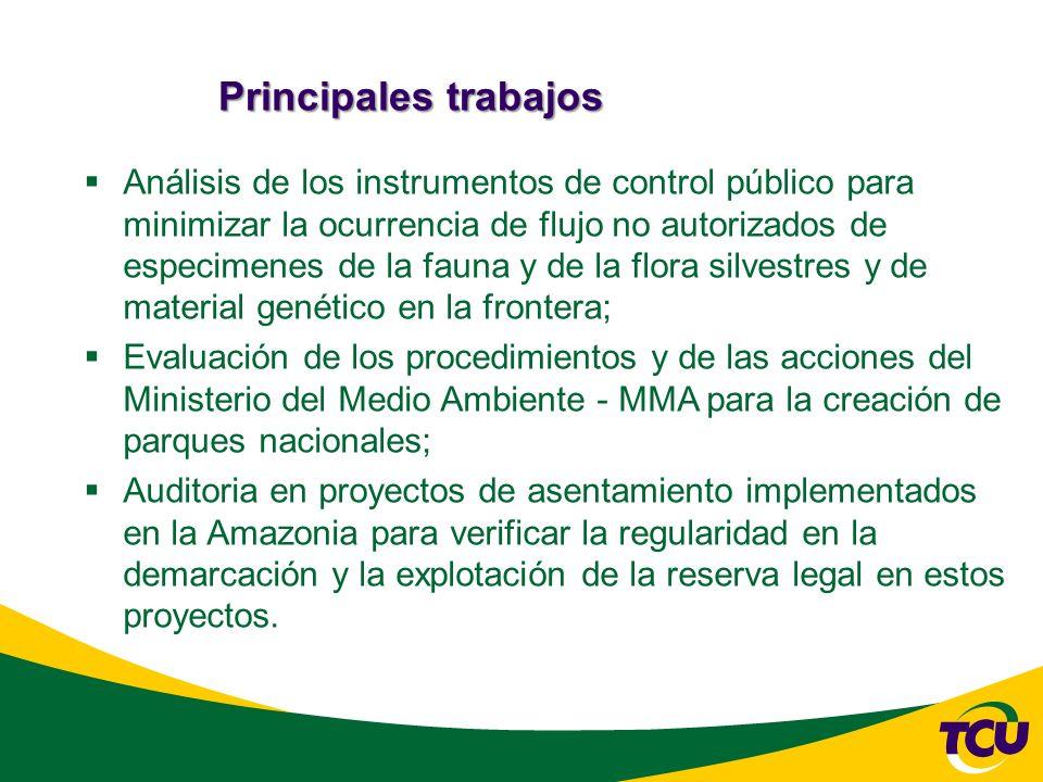 Principales trabajos Análisis de los instrumentos de control público para minimizar la ocurrencia de flujo no autorizados de especimenes de la fauna y de la flora silvestres y de material genético en la frontera; Evaluación de los procedimientos y de las acciones del Ministerio del Medio Ambiente - MMA para la creación de parques nacionales; Auditoria en proyectos de asentamiento implementados en la Amazonia para verificar la regularidad en la demarcación y la explotación de la reserva legal en estos proyectos.