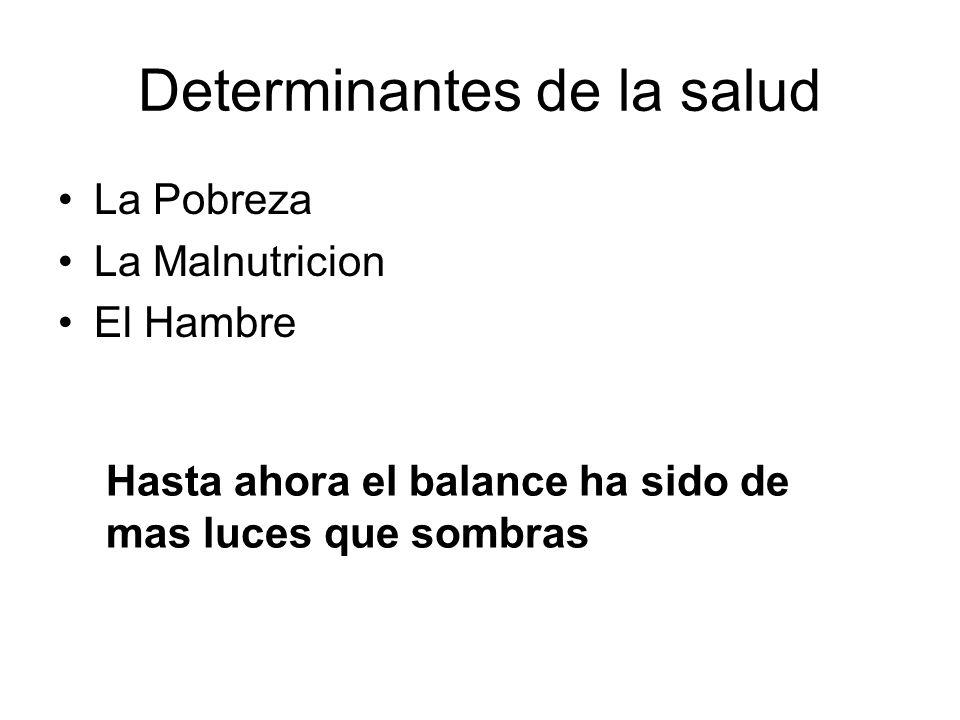 Determinantes de la salud La Pobreza La Malnutricion El Hambre Hasta ahora el balance ha sido de mas luces que sombras