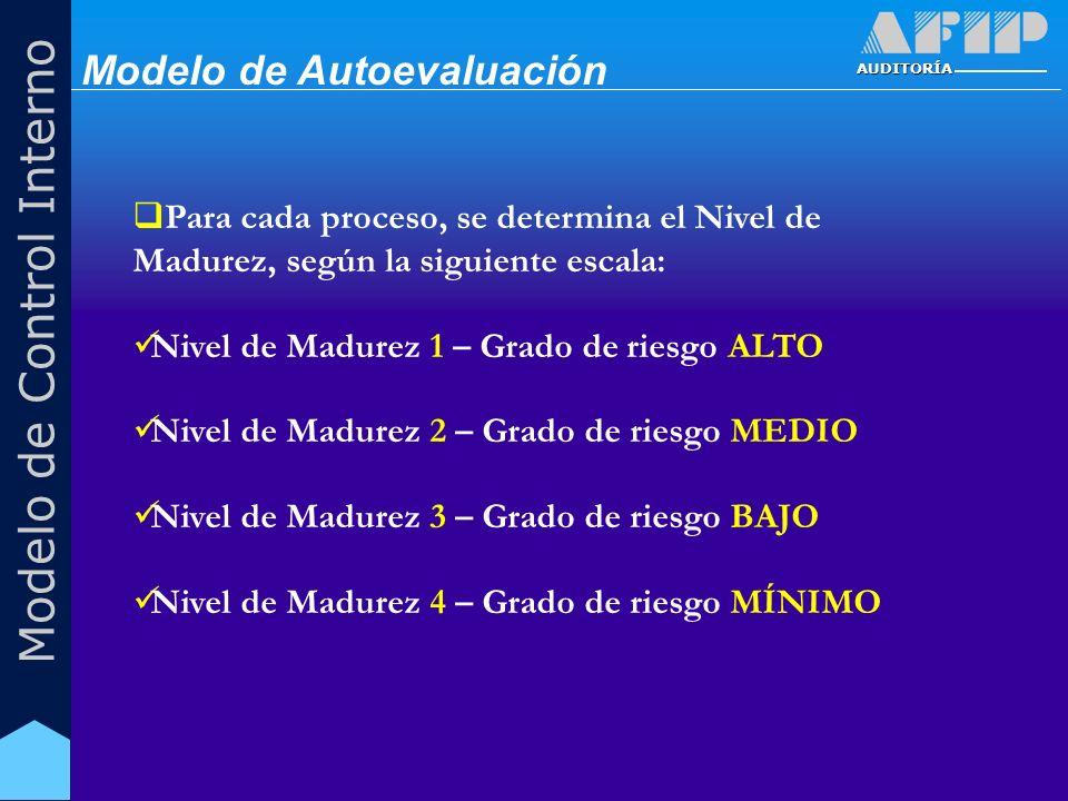 AUDITORÍA Modelo de Control Interno Para cada proceso, se determina el Nivel de Madurez, según la siguiente escala: Nivel de Madurez 1 – Grado de ries