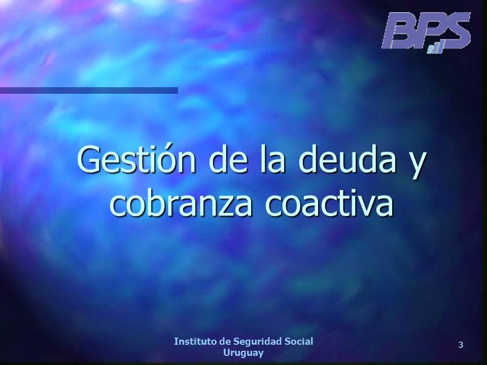 44 Instituto de Seguridad Social Uruguay CANTIDAD DE CONVENIOS FIRMADOS MES A MES DESDE ENERO 2006 A MAYO 2007