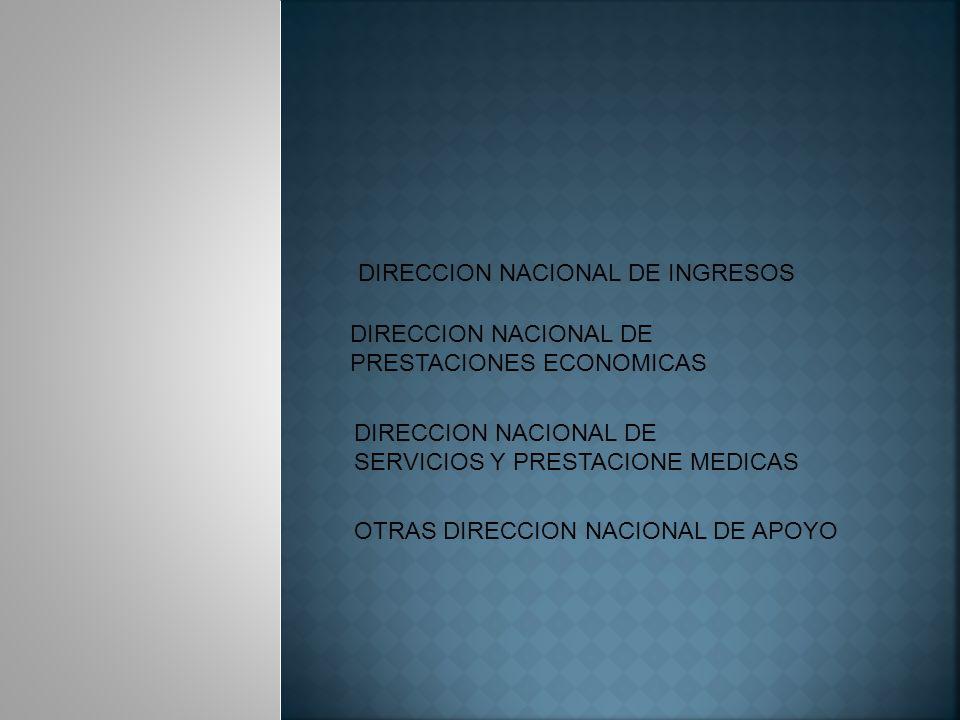 DIRECCION NACIONAL DE INGRESOS DIRECCION NACIONAL DE PRESTACIONES ECONOMICAS DIRECCION NACIONAL DE SERVICIOS Y PRESTACIONE MEDICAS OTRAS DIRECCION NACIONAL DE APOYO