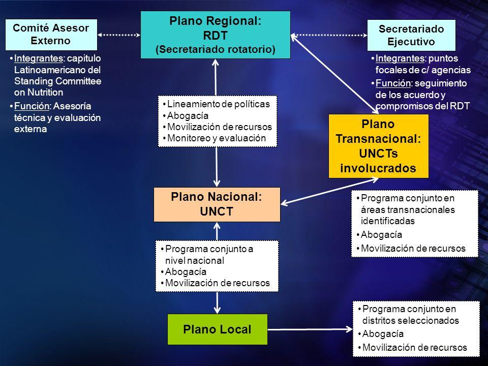 Secretariado Ejecutivo Comité Asesor Externo Plano Local Plano Transnacional: UNCTs involucrados Plano Regional: RDT (Secretariado rotatorio) Plano Na
