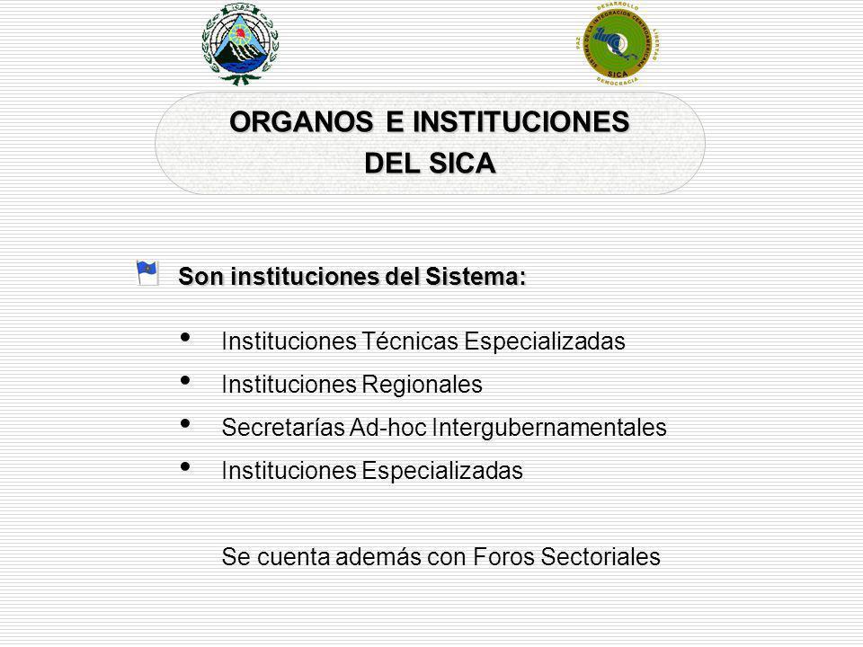 ORGANOS E INSTITUCIONES DEL SICA Son instituciones del Sistema: Instituciones Técnicas Especializadas Instituciones Regionales Secretarías Ad-hoc Inte