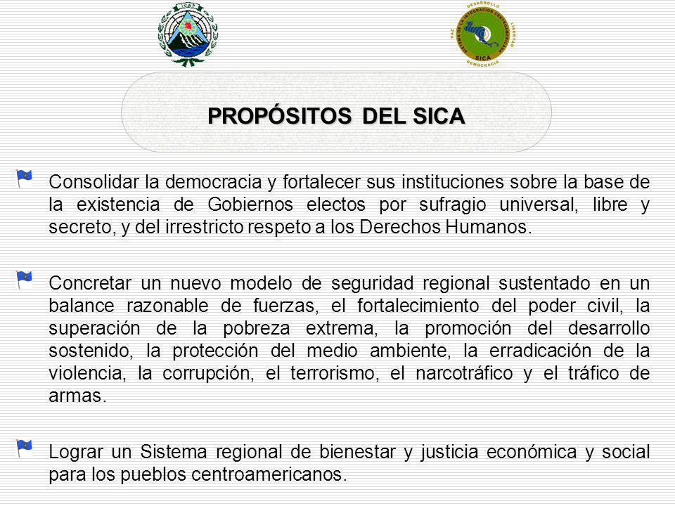 Consolidar la democracia y fortalecer sus instituciones sobre la base de la existencia de Gobiernos electos por sufragio universal, libre y secreto, y