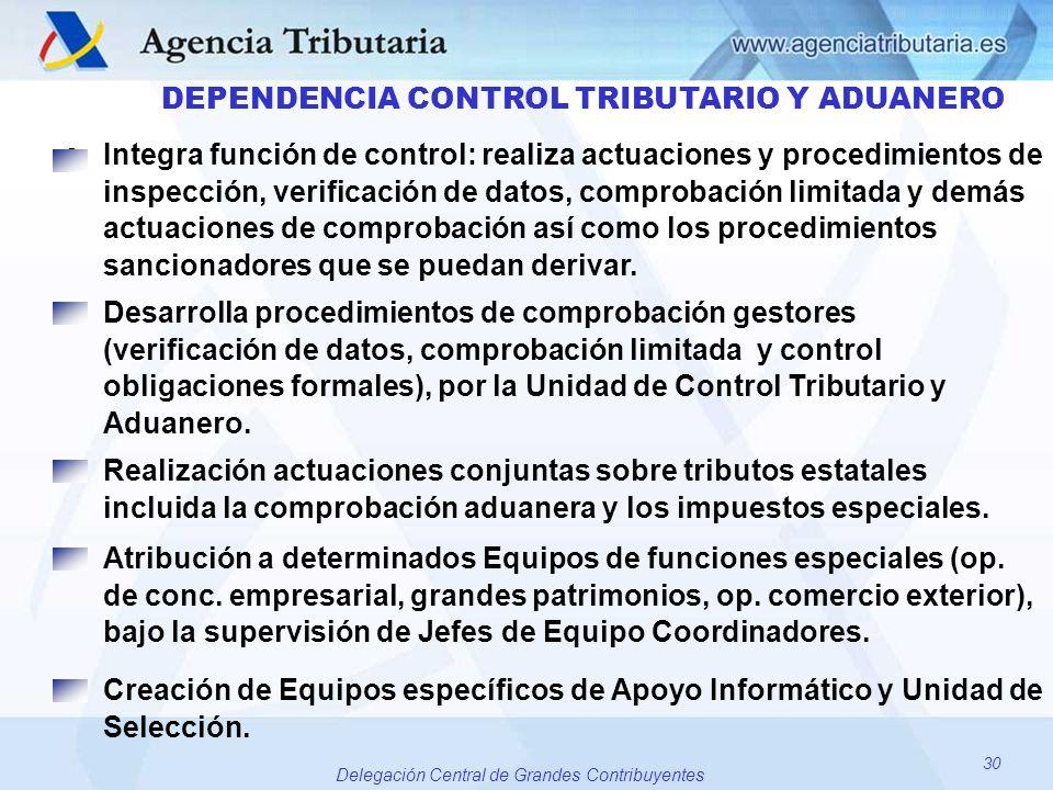 30 Delegación Central de Grandes Contribuyentes DEPENDENCIA CONTROL TRIBUTARIO Y ADUANERO oIntegra función de control: realiza actuaciones y procedimi