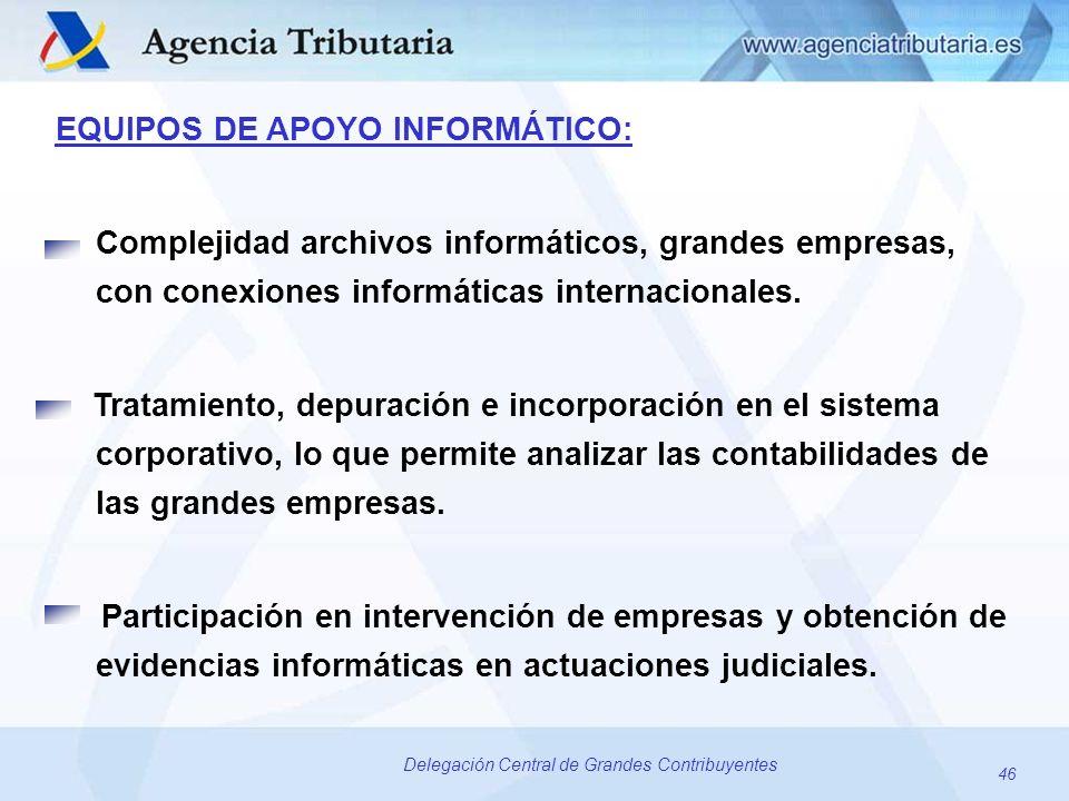 46 Delegación Central de Grandes Contribuyentes EQUIPOS DE APOYO INFORMÁTICO: Complejidad archivos informáticos, grandes empresas, con conexiones info
