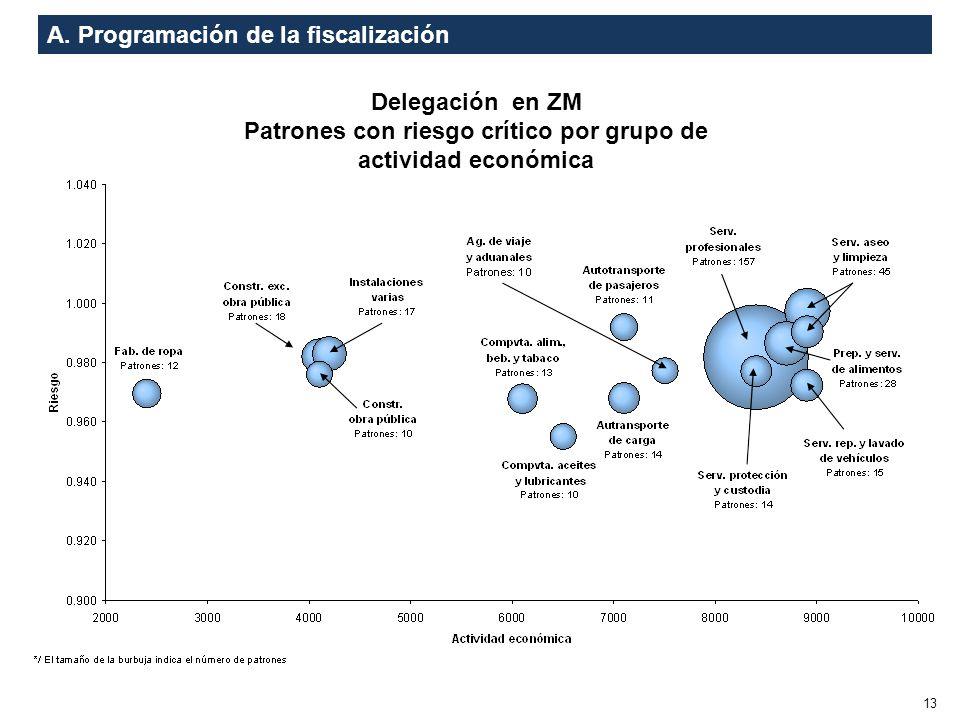 A. Programación de la fiscalización 13 Delegación en ZM Patrones con riesgo crítico por grupo de actividad económica