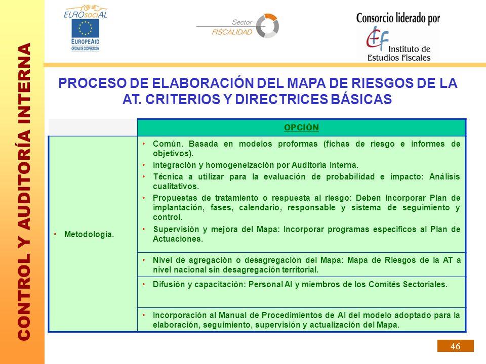 CONTROL Y AUDITORÍA INTERNA 46 PROCESO DE ELABORACIÓN DEL MAPA DE RIESGOS DE LA AT. CRITERIOS Y DIRECTRICES BÁSICAS OPCIÓN Metodología. Común. Basada