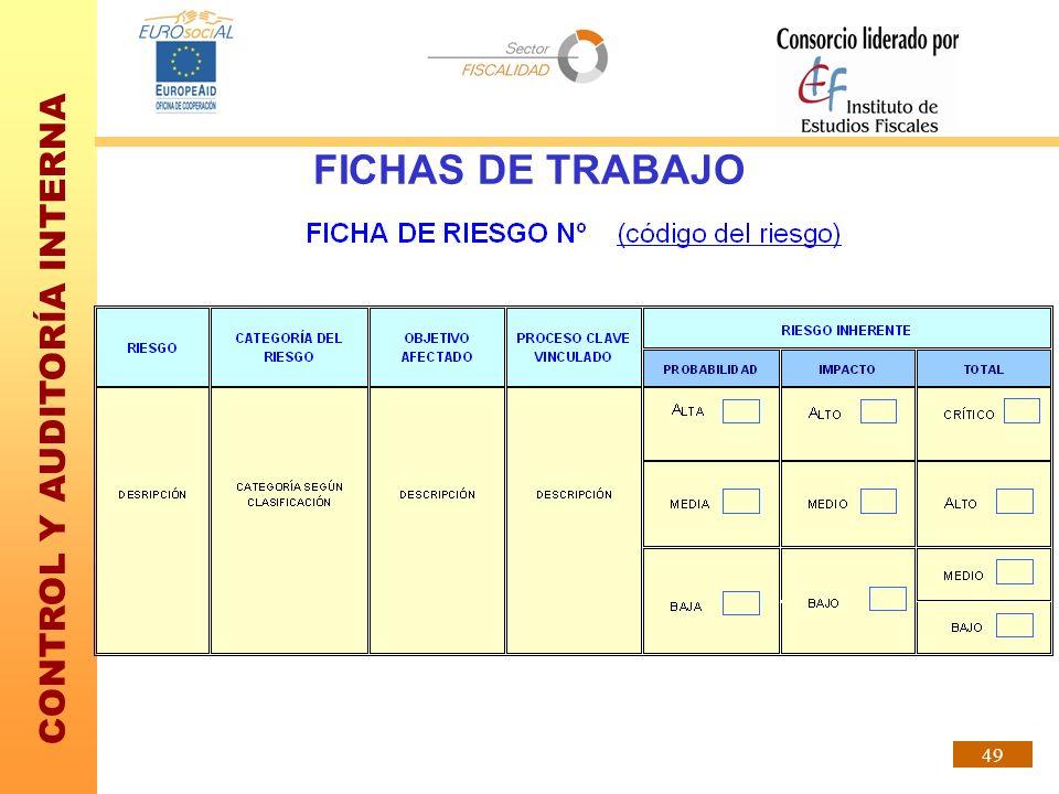 CONTROL Y AUDITORÍA INTERNA 49 FICHAS DE TRABAJO