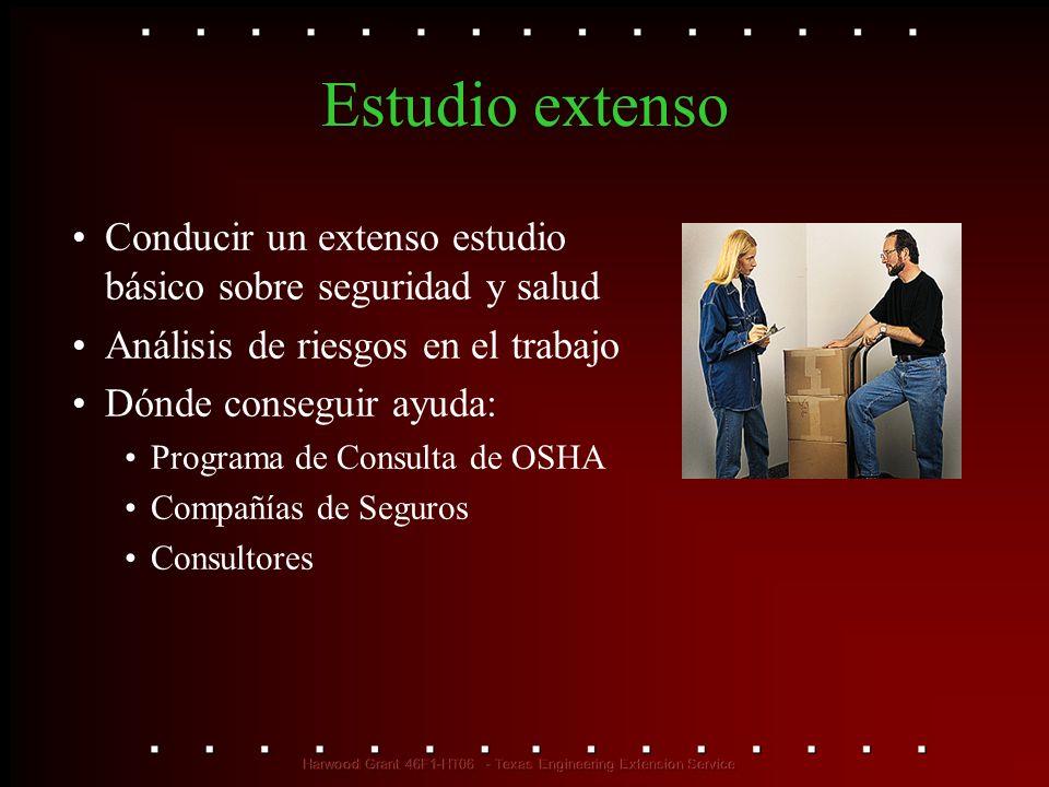 Estudio extenso Conducir un extenso estudio básico sobre seguridad y salud Análisis de riesgos en el trabajo Dónde conseguir ayuda: Programa de Consul