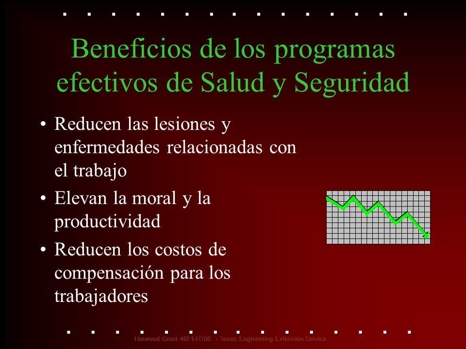 Beneficios de los programas efectivos de Salud y Seguridad Reducen las lesiones y enfermedades relacionadas con el trabajo Elevan la moral y la produc
