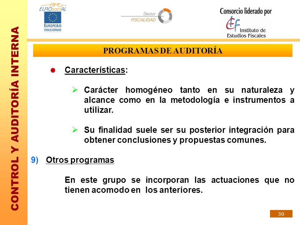 CONTROL Y AUDITORÍA INTERNA 30 PROGRAMAS DE AUDITORÍA Características: Carácter homogéneo tanto en su naturaleza y alcance como en la metodología e in