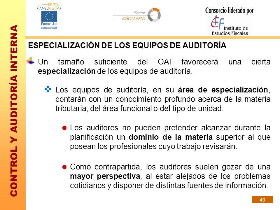 CONTROL Y AUDITORÍA INTERNA 40 ESPECIALIZACIÓN DE LOS EQUIPOS DE AUDITORÍA Un tamaño suficiente del OAI favorecerá una cierta especialización de los e