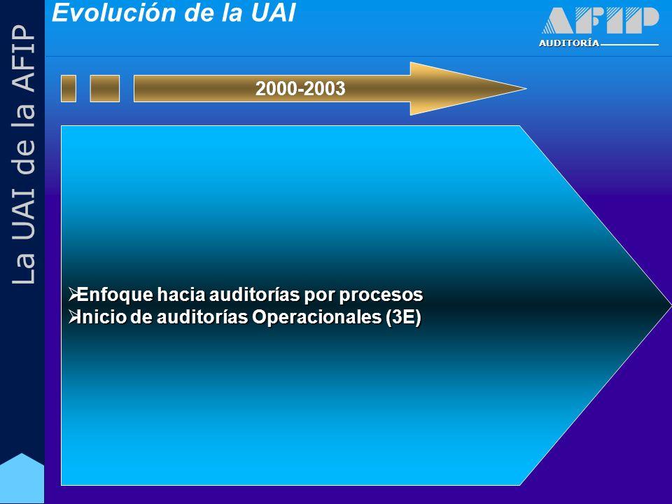 AUDITORÍA La UAI de la AFIP Enfoque hacia auditorías por procesos Enfoque hacia auditorías por procesos Inicio de auditorías Operacionales (3E) Inicio de auditorías Operacionales (3E) 2000-2003 Evolución de la UAI