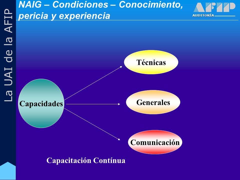 AUDITORÍA La UAI de la AFIP Capacidades Técnicas Generales Comunicación Capacitación Contínua NAIG – Condiciones – Conocimiento, pericia y experiencia