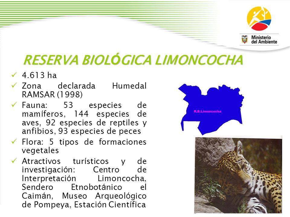 RESERVA BIOL Ó GICA LIMONCOCHA 4.613 ha Zona declarada Humedal RAMSAR (1998) Fauna: 53 especies de mam í feros, 144 especies de aves, 92 especies de r