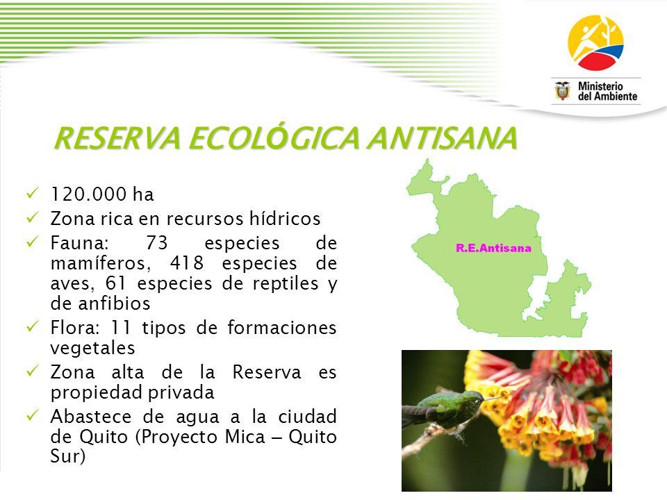RESERVA ECOL Ó GICA ANTISANA 120.000 ha Zona rica en recursos h í dricos Fauna: 73 especies de mam í feros, 418 especies de aves, 61 especies de repti