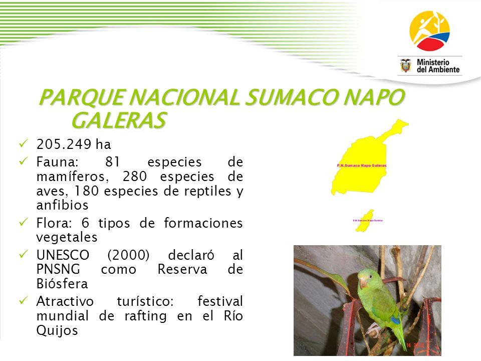 PARQUE NACIONAL SUMACO NAPO GALERAS 205.249 ha Fauna: 81 especies de mam í feros, 280 especies de aves, 180 especies de reptiles y anfibios Flora: 6 t