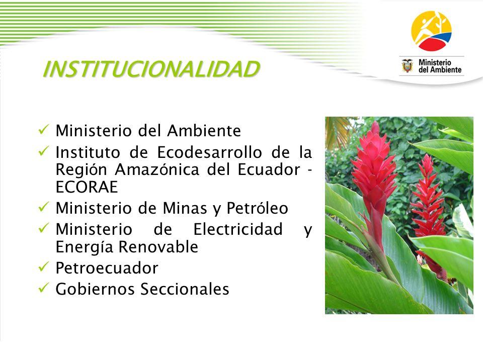 INSTITUCIONALIDAD Ministerio del Ambiente Instituto de Ecodesarrollo de la Regi ó n Amaz ó nica del Ecuador - ECORAE Ministerio de Minas y Petr ó leo