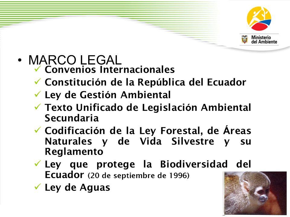 MARCO LEGAL Convenios Internacionales Constituci ó n de la Rep ú blica del Ecuador Ley de Gesti ó n Ambiental Texto Unificado de Legislaci ó n Ambient