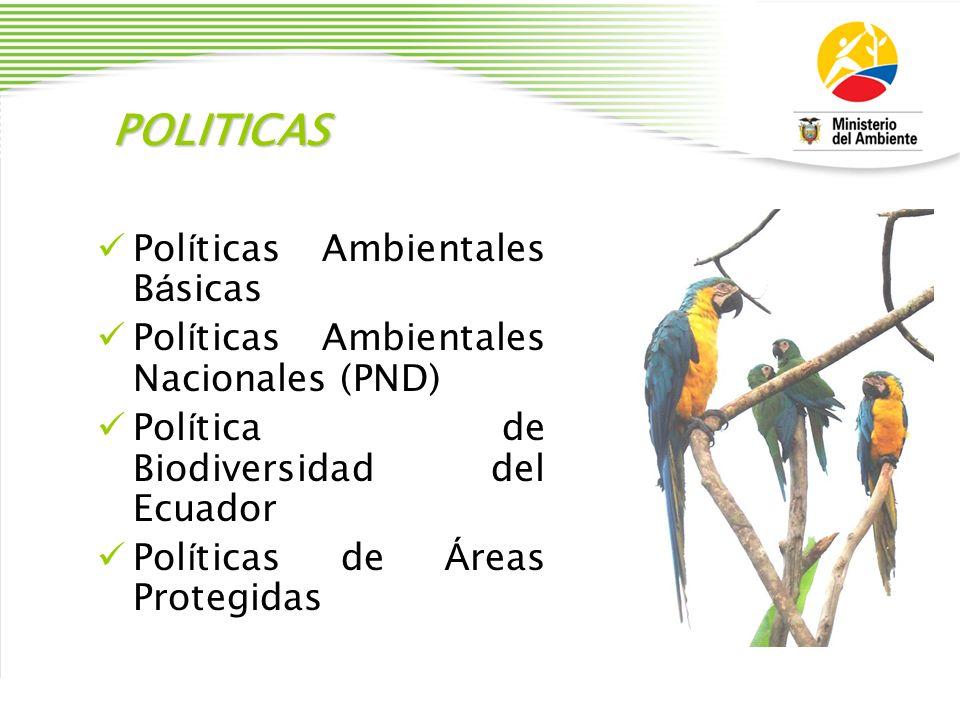 POLITICAS Pol í ticas Ambientales B á sicas Pol í ticas Ambientales Nacionales (PND) Pol í tica de Biodiversidad del Ecuador Pol í ticas de Á reas Pro