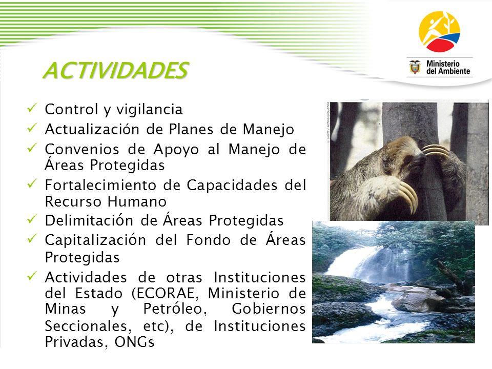ACTIVIDADES Control y vigilancia Actualizaci ó n de Planes de Manejo Convenios de Apoyo al Manejo de Á reas Protegidas Fortalecimiento de Capacidades