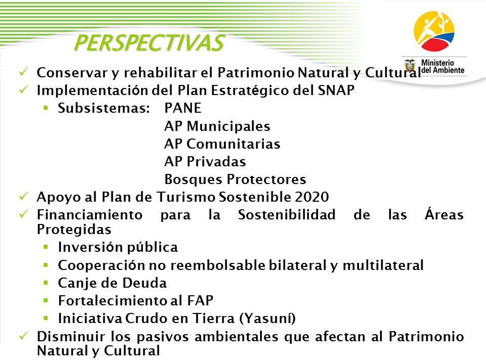 PERSPECTIVAS Conservar y rehabilitar el Patrimonio Natural y Cultural Implementaci ó n del Plan Estrat é gico del SNAP Subsistemas: PANE AP Municipale