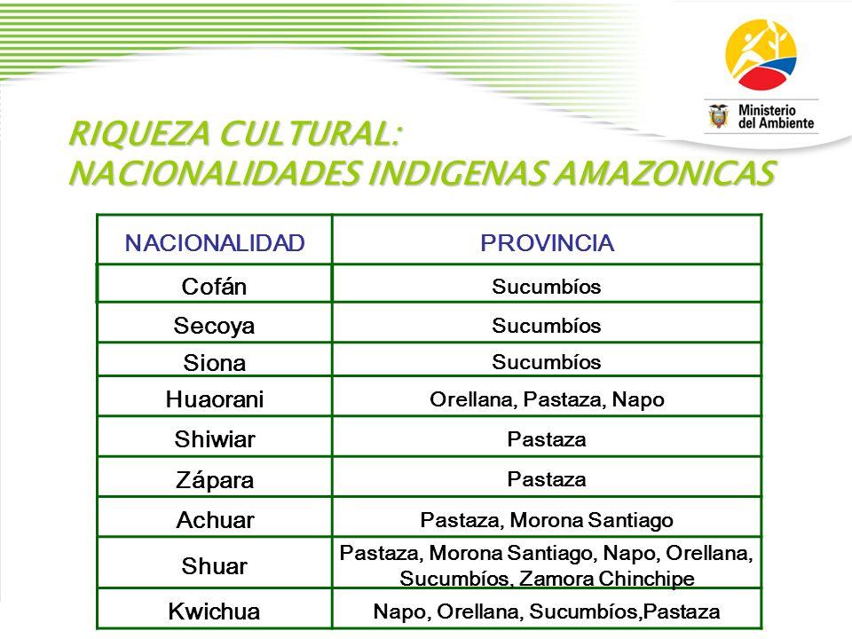 RIQUEZA CULTURAL: NACIONALIDADES INDIGENAS AMAZONICAS NACIONALIDADPROVINCIA Cofán Sucumbíos Secoya Sucumbíos Siona Sucumbíos Huaorani Orellana, Pastaz