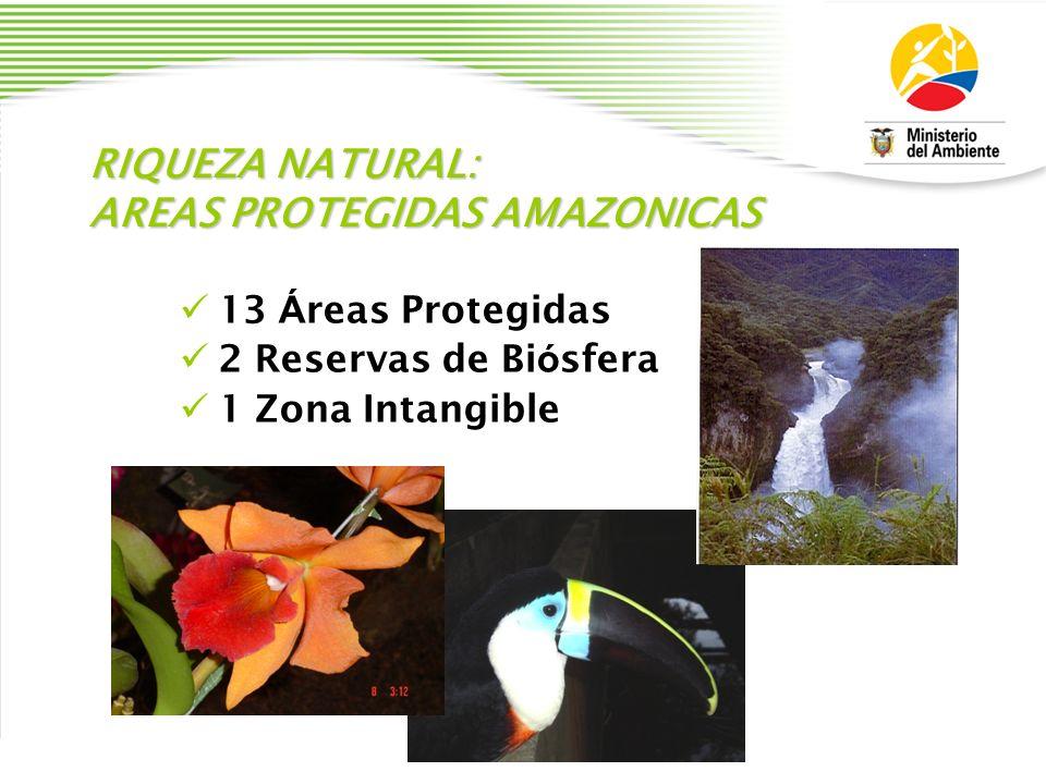 PLANES Y ESTRATEGIAS Plan Nacional de Desarrollo Plan Estrat é gico del Sistema Nacional de Á reas Protegidas Planes de Manejo de Á reas Protegidas Estrategia Nacional de Biodiversidad Agenda para la Gesti ó n del Patrimonio Natural y Cultural Agenda Ambiental
