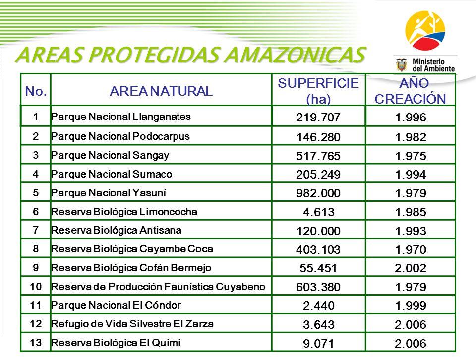 AREAS PROTEGIDAS AMAZONICAS No.AREA NATURAL SUPERFICIE (ha) AÑO CREACIÓN 1Parque Nacional Llanganates 219.7071.996 2Parque Nacional Podocarpus 146.280