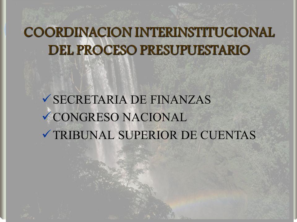 COORDINACION INTERINSTITUCIONAL DEL PROCESO PRESUPUESTARIO SECRETARIA DE FINANZAS CONGRESO NACIONAL TRIBUNAL SUPERIOR DE CUENTAS