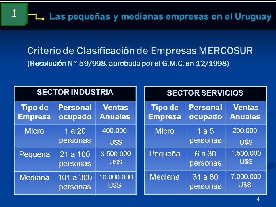 4 Criterio de Clasificación de Empresas MERCOSUR (Resolución N° 59/998, aprobada por el G.M.C. en 12/1998) SECTOR INDUSTRIA Tipo de Empresa Personal o